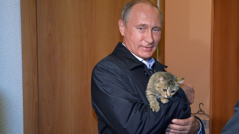 Behind The Hard Man Image Russian President Vladimir