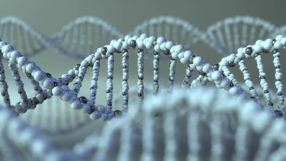 The 'Warrior Gene' (MAOA) Predicts Behavioral Aggression ...