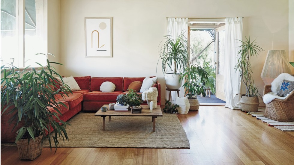 need help designing my living room couch peta tomlinson why we should be greening our homes with plants top trend for