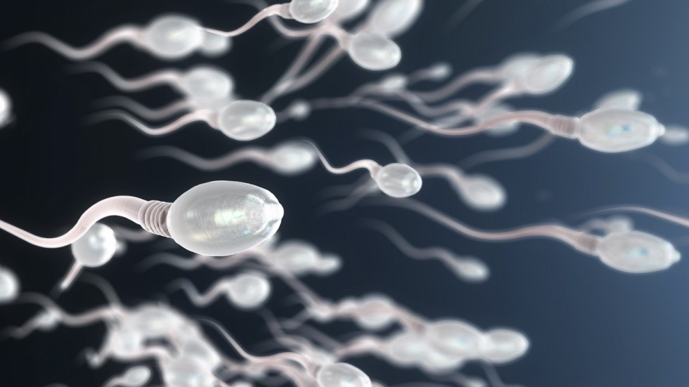 And quality alcohol sperm