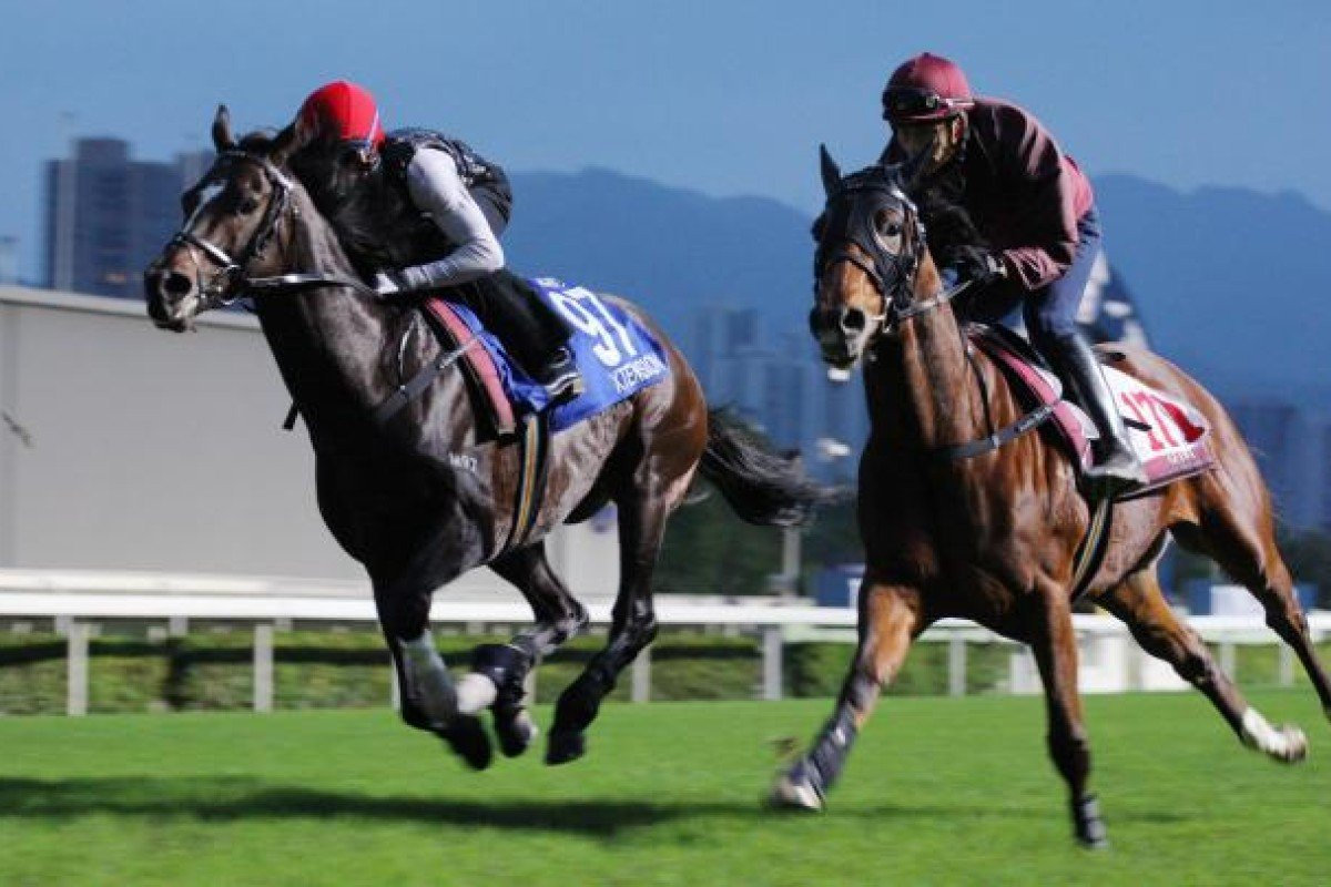 Xtension shades Charles The Great in their gallop.