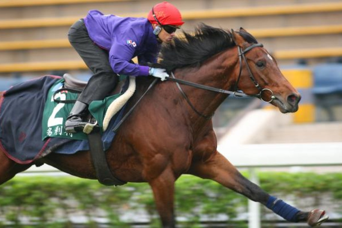 Craig Williams gets Dunaden reacquainted with the Sha Tin turf yesterday. Photo: Kenneth Chan