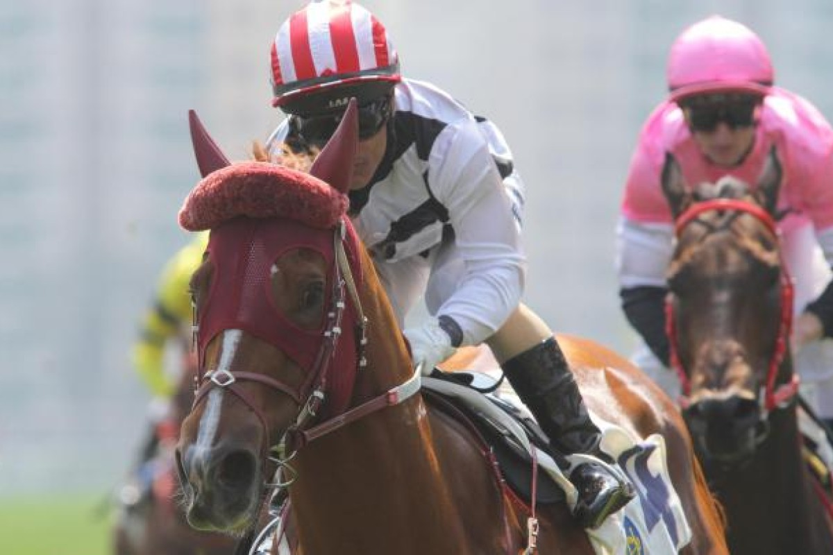 A relaxed Straight Gold (Weichong Marwing), sporting an unusual looking headgear - a sheepskin brow band - shows a powerful turn of foot to win race three, beating hotpot Little Cow. Photo: Kenneth Chan