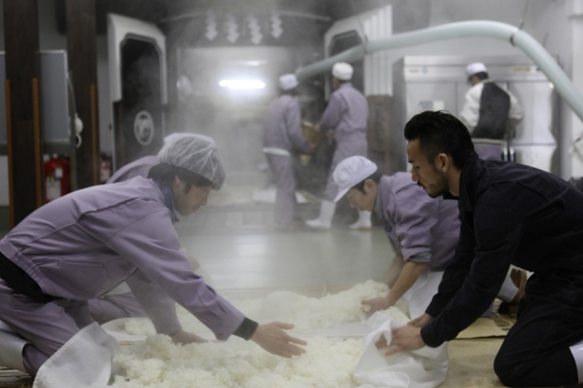 Nakata helps prepare rice to be used in the production of sake, in Yamagata prefecture.