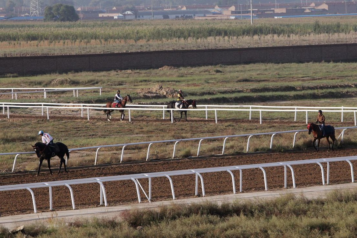 The dirt track was built in corn fields on the outskirts of Hohhot. Photos: David Wong