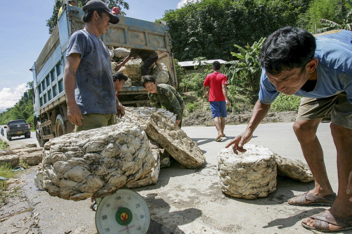 Chinese entrepreneurs buy rubber bales from Laotian farmers.