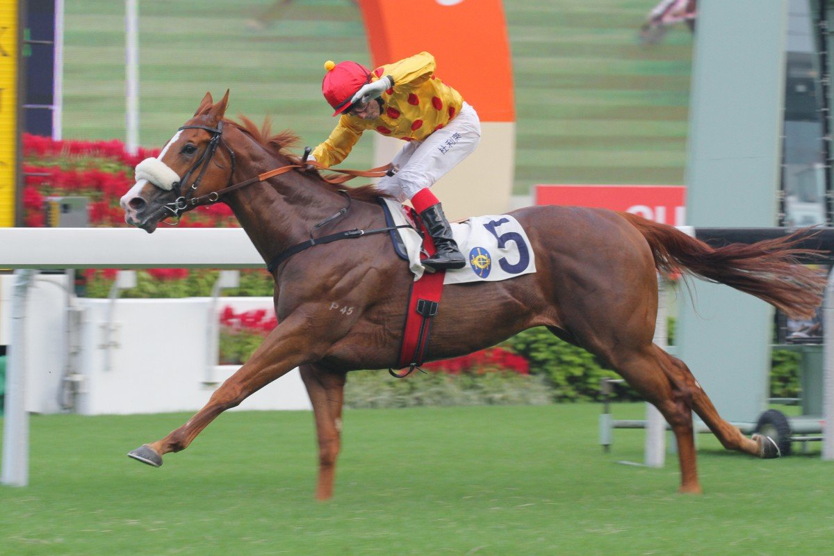Gold-Fun, ridden by Olivier Doleuze, wins the National Day Cup. Photo: Kenneth Chan