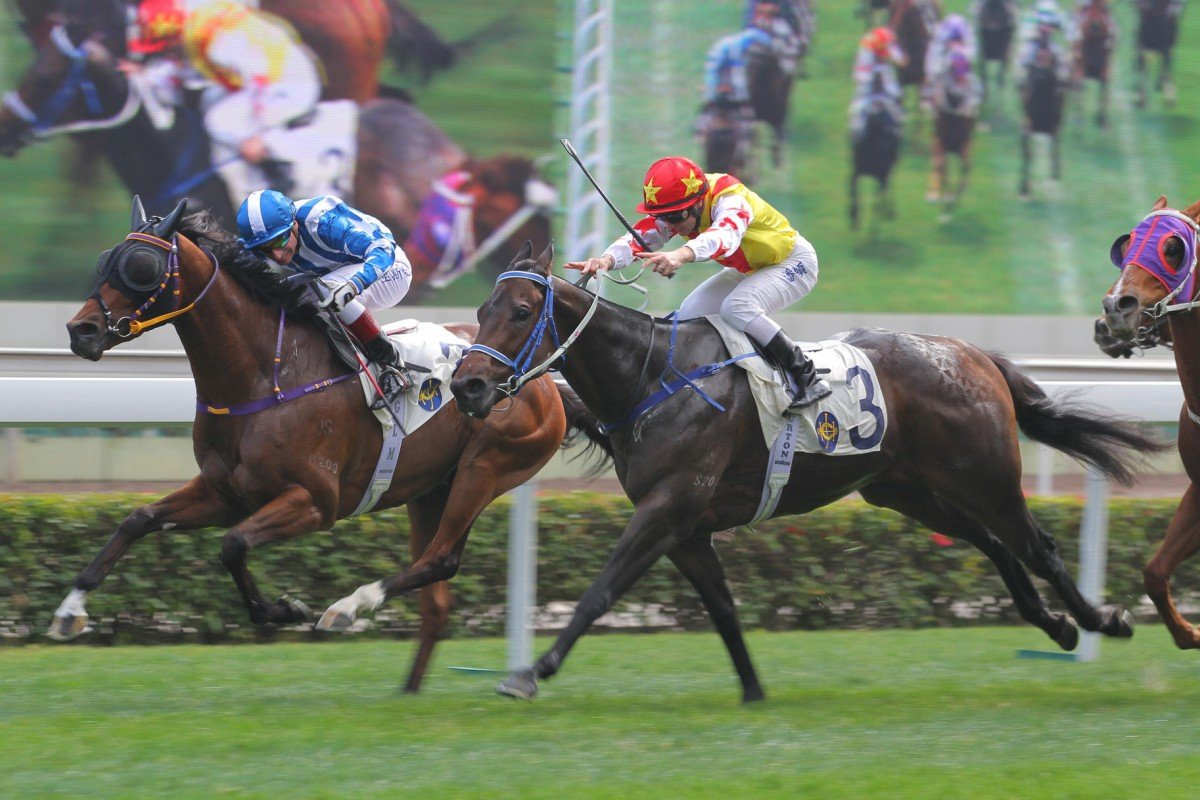 Star of Bond (Gerald Mosse) holds off Supreme King (Zac Purton) at Sha Tin on Sunday. Photo: Kenneth Chan