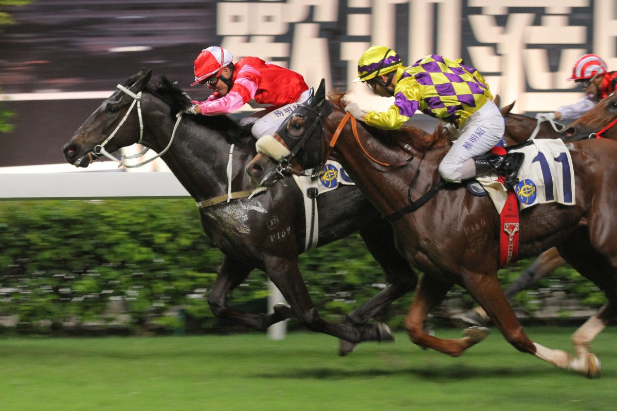 Winnie's Horse (inside, Keith Yeung Ming-lun) holds on to win at Happy Valley in July. He will be looking for his first win this season with Joao Moreira aboard. Photo: Kenneth Chan