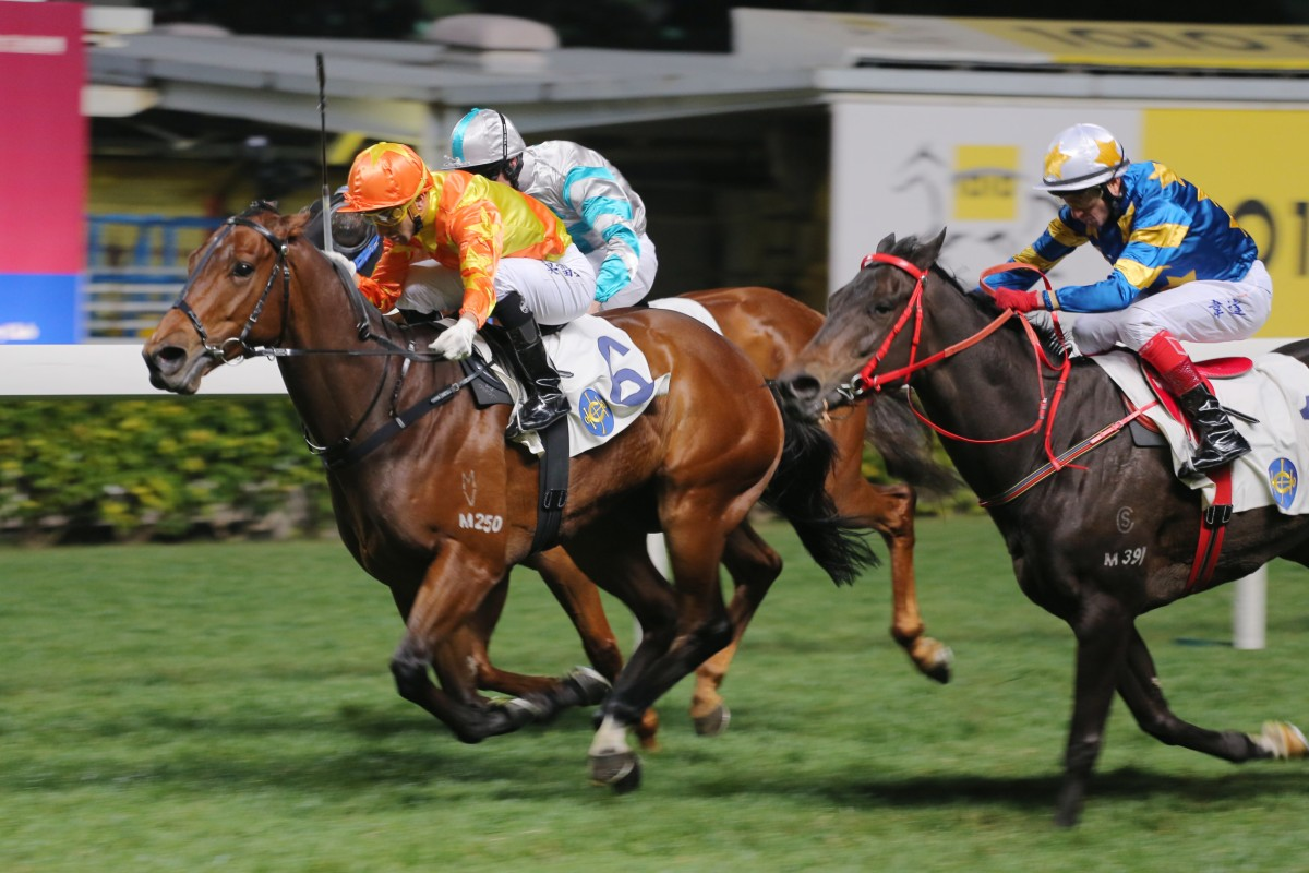 Twin Turbo can win again after being unlucky last Wednesday night. Photo: Kenneth Chan