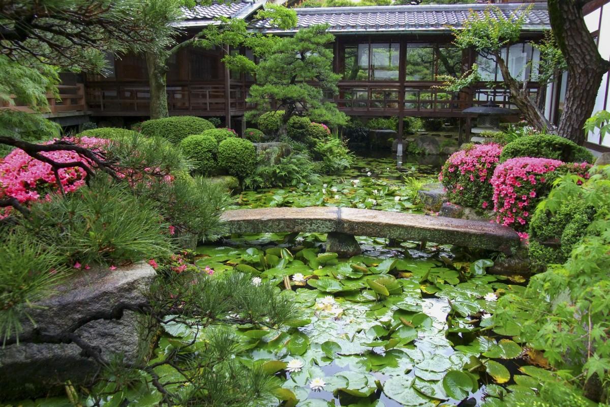 The Seiganji Temple garden.