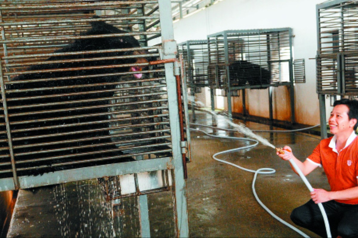 Yan Shaohong, whose Nanning bear-bile farm will be converted into a sanctuary for the animals.