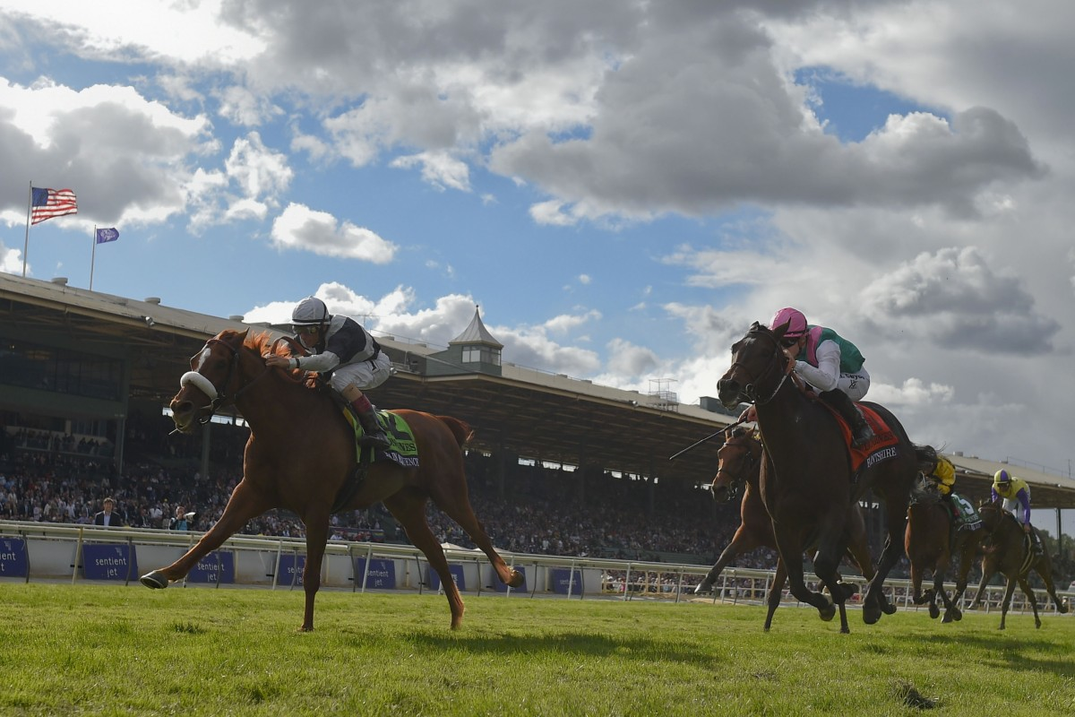 Flintshire (pink cap) finishes second to Main Sequence in the Breeders' Cup Turf earlier this month. Photo: AP/Kenneth Chan