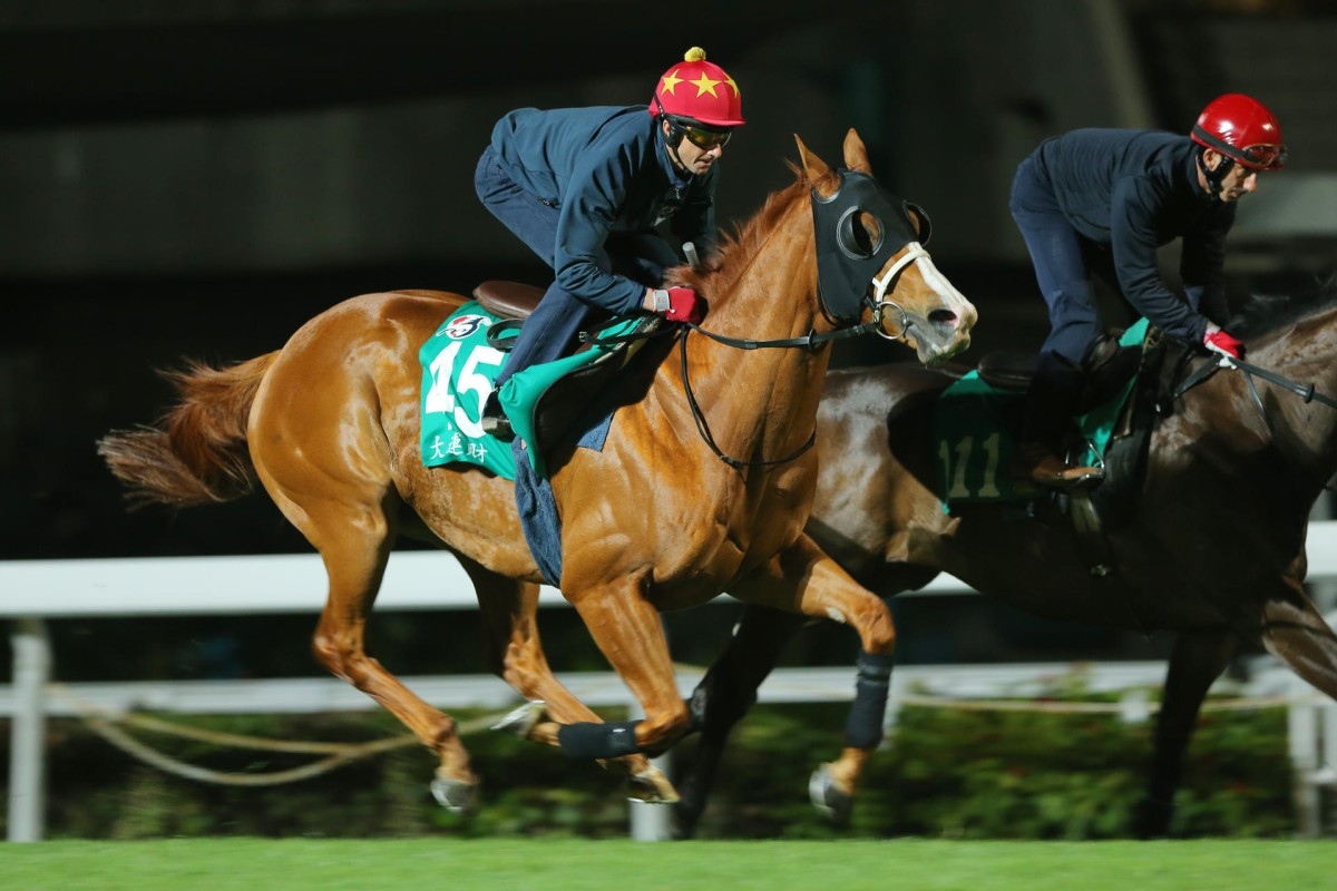 Gold-Fun gallops strongly alongside stablemate Great Charm on Tuesday morning. Photo: Kenneth Chan
