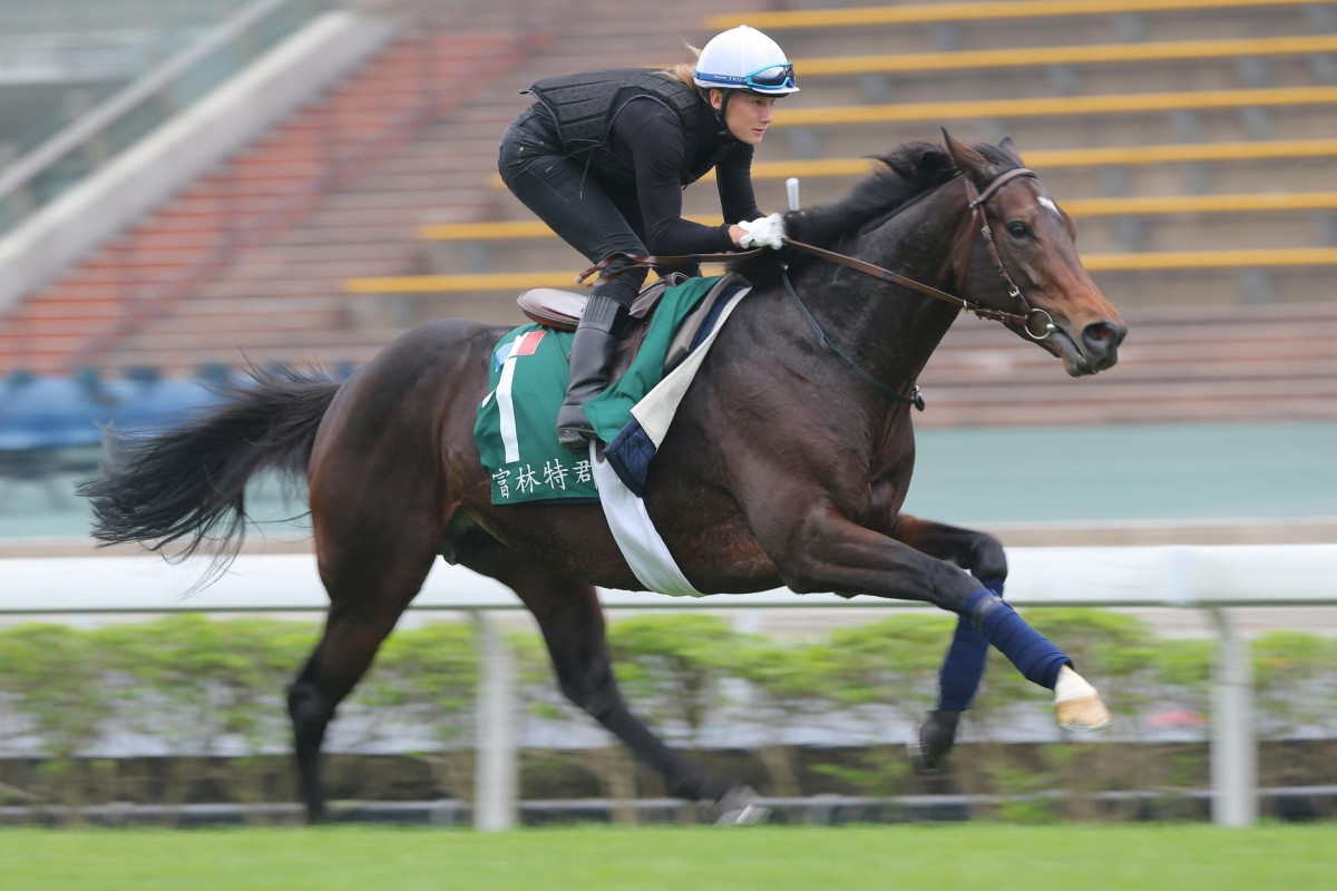 Flintshire's easy workout at Sha Tine looks very quick even to the untrained observer.