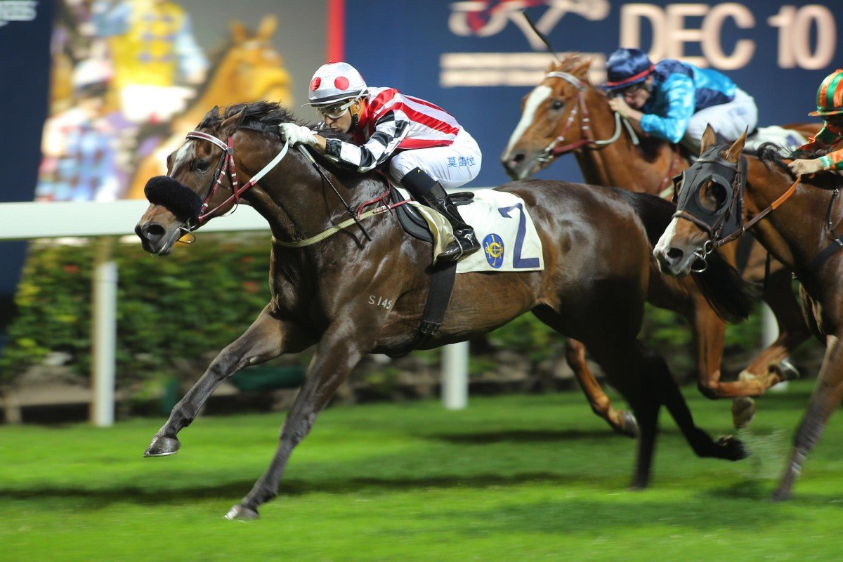Joao Moreira pilots Harbour Master to his second consecutive victory of the season at Happy Valley. Photos: Kenneth Chan