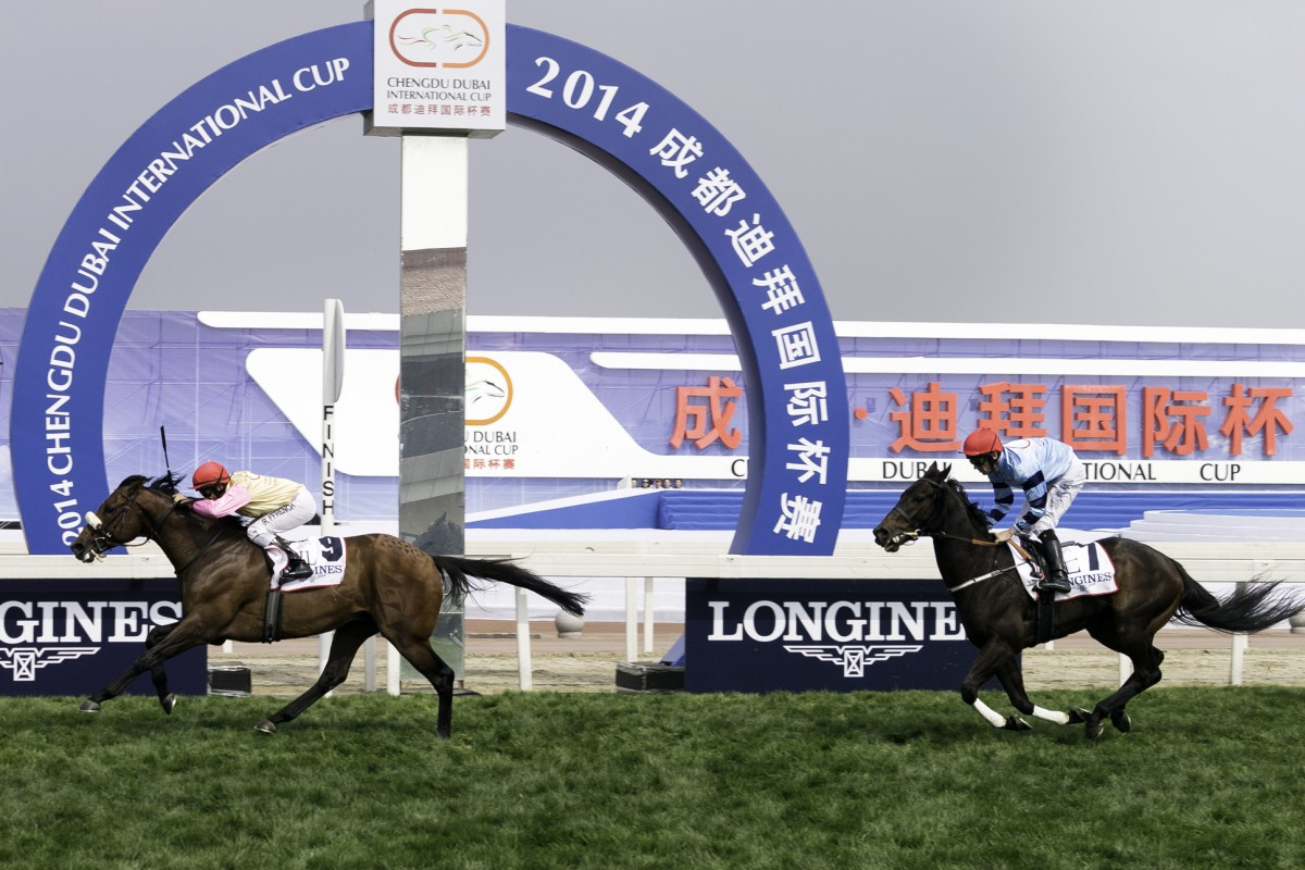The Chengdu race meeting planned for next Saturday has been postponed due to equine influenza. Photos: SCMP, Kenneth Chan
