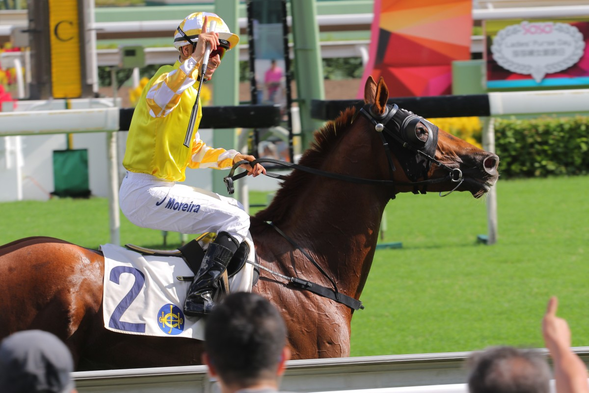 Punters may love Joao Moreira, but while his strike rate is impressive, backing every one of his mounts this season would send most to the poorhouse. Photo: Kenneth Chan