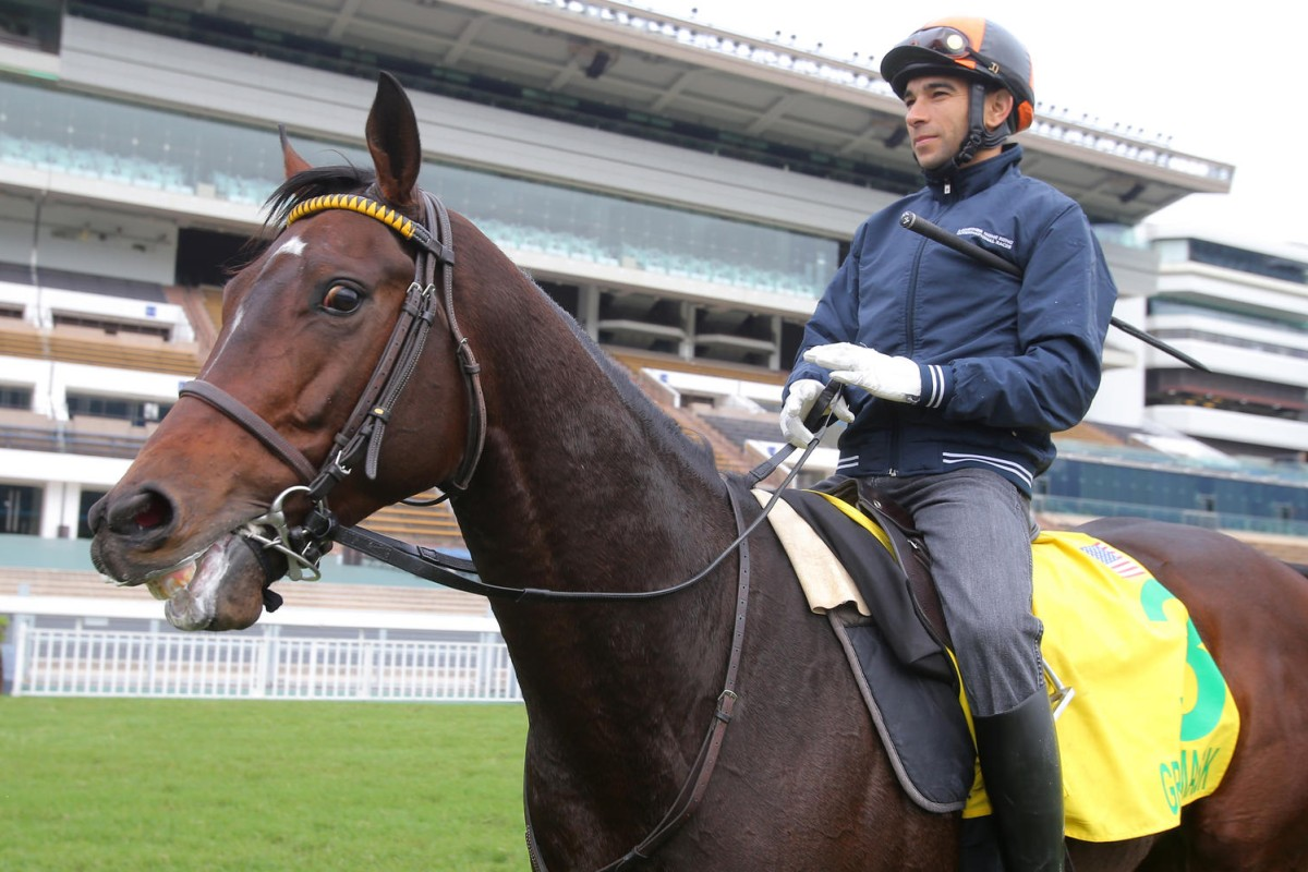 Joao Moreira takes Green Mask back to the quarantine stables after another turf gallop at Sha Tin. Photos: Kenneth Chan