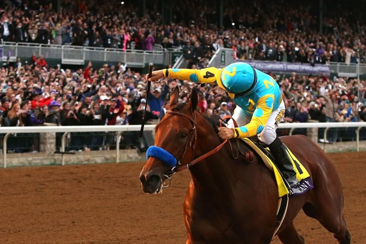 """American Pharoah's """"Grand Slam"""" victory - the Triple Crown and the Breeders' Cup Classic - was one of the biggest moments in world racing in 2015. Photo: AFP"""