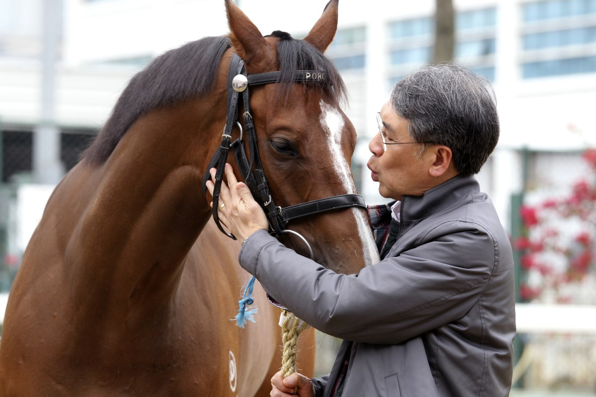 Dr Gene Tsoi with his horse Mr Gnocchi, who has the Chinese name 好靚仔 (Ho Leng Zhai) - named after his dog. Photo: SCMP, Kenneth Chan