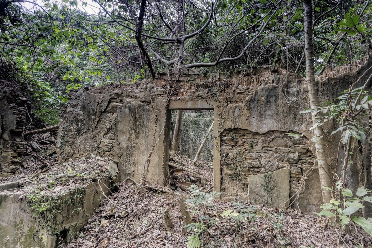 The ruins of houses on Tung Ping Chau.  Photos: Antony Dickson; Pete Spurrier; Jonathan Wong; Martin Williams; May Tse