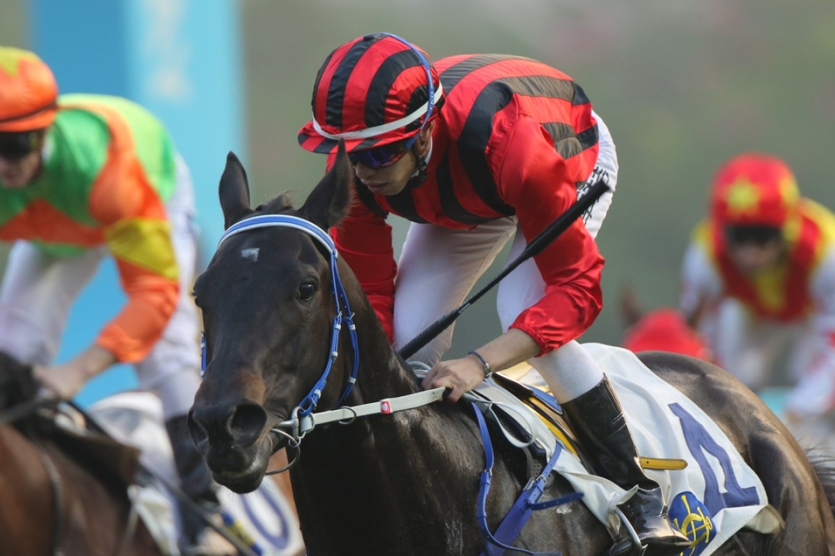 Vincent Ho steers Gonna Run, fifth in the French Derby to The Grey Gatsby in 2014, to his first Hong Kong win in Class Three. Photo: Kenneth Chan