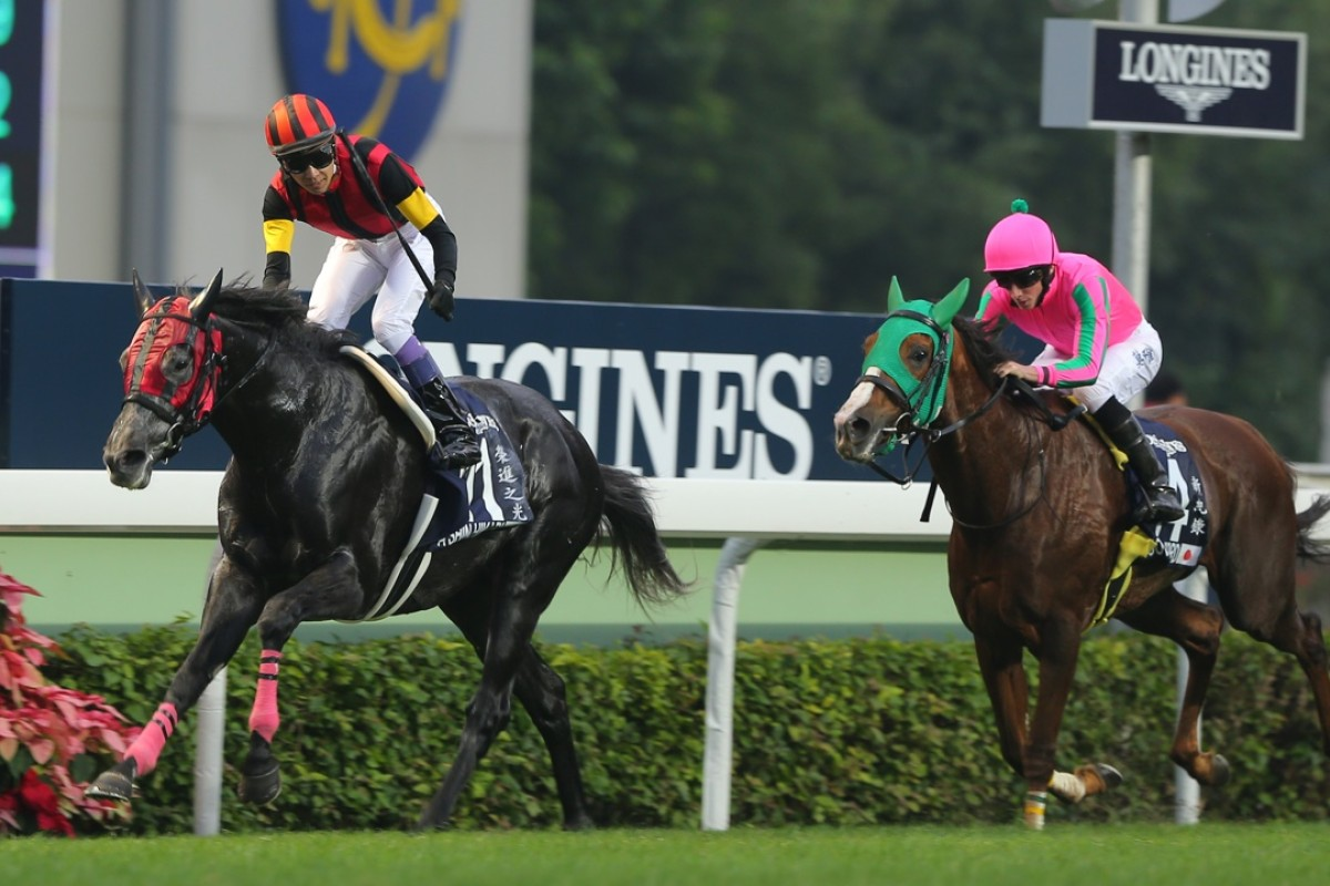 Japanese horses like A Shin Hikari and Nuovo Record could be enticed to Hong Kong after every all-age Group race, bar the Hong Kong Macau Trophy, was opened to international competion. Photo: Kenneth Chan