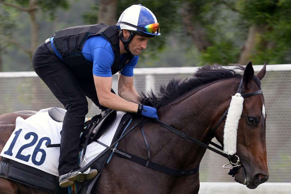 Neil Callan takes Green Card for a gallop down the riverside at Sha Tin on Thursday morning. Photo: Kenneth Chan