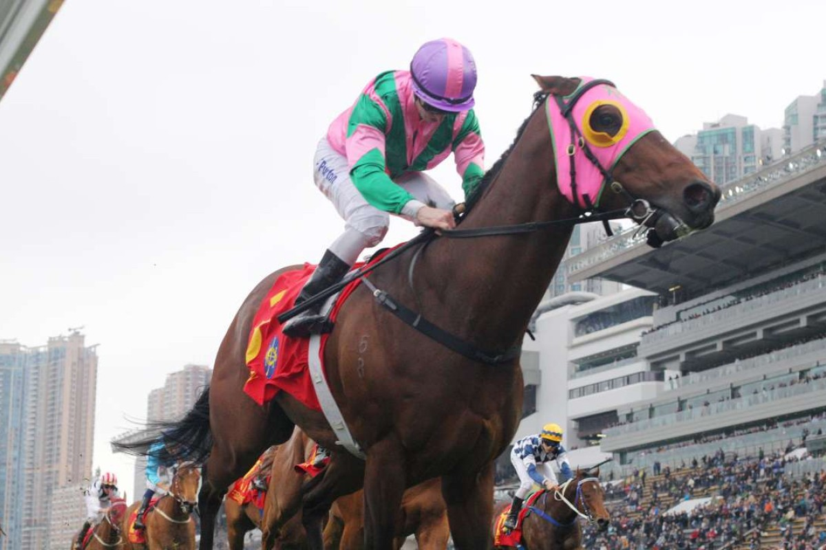 Aerovelocity, seen here winning the Group One Centenary Sprint Cup, is one of the five most fascinating horses in Hong Kong this season. Photos: Kenneth Chan