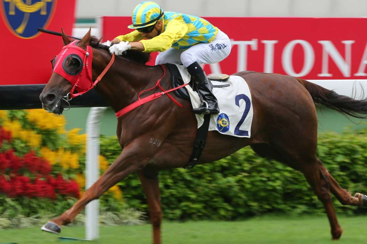 Good Method has the scope to win in Class Four. Photos: Kenneth Chan