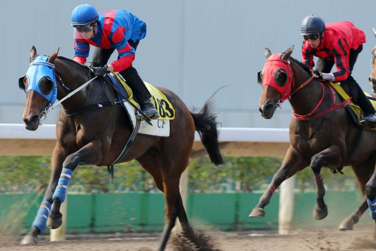 Zac Purton gives Gun Pit a hit-out in Tuesday's barrier trial at Sha Tin. Photos: Kenneth Chan