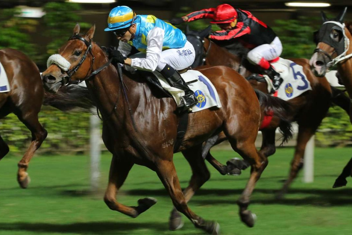 Step up in distance can help Vara Pearl prevail at Happy Valley | HK ...