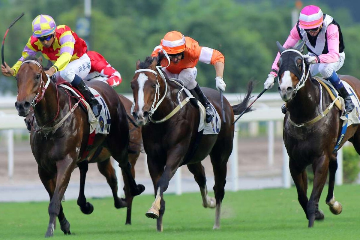 Designs On Rome (left) fights off Blazing Speed and Beauty Only to win the Group Two Sha Tin Trophy. Photos: Kenneth Chan