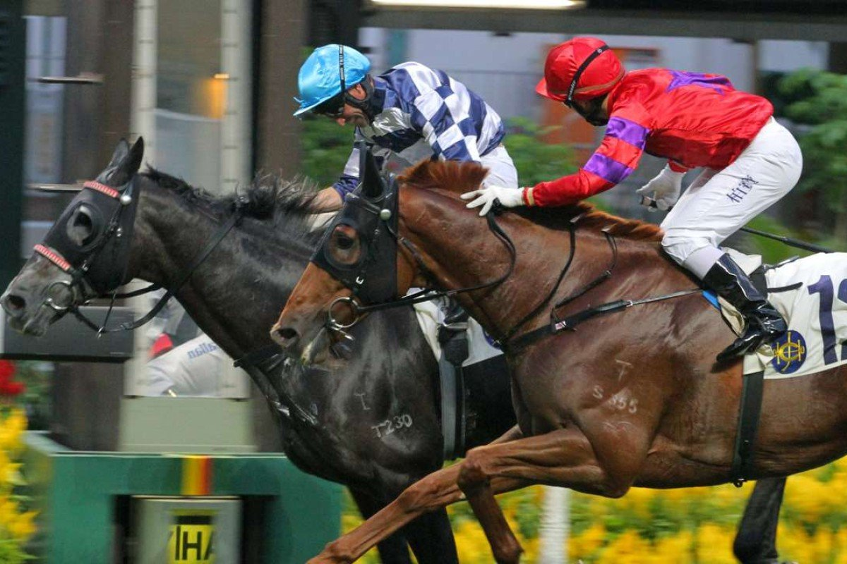 Neil Callan drives Packing Dragon to victory at Happy Valley on Sunday. Photos: Kenneth Chan