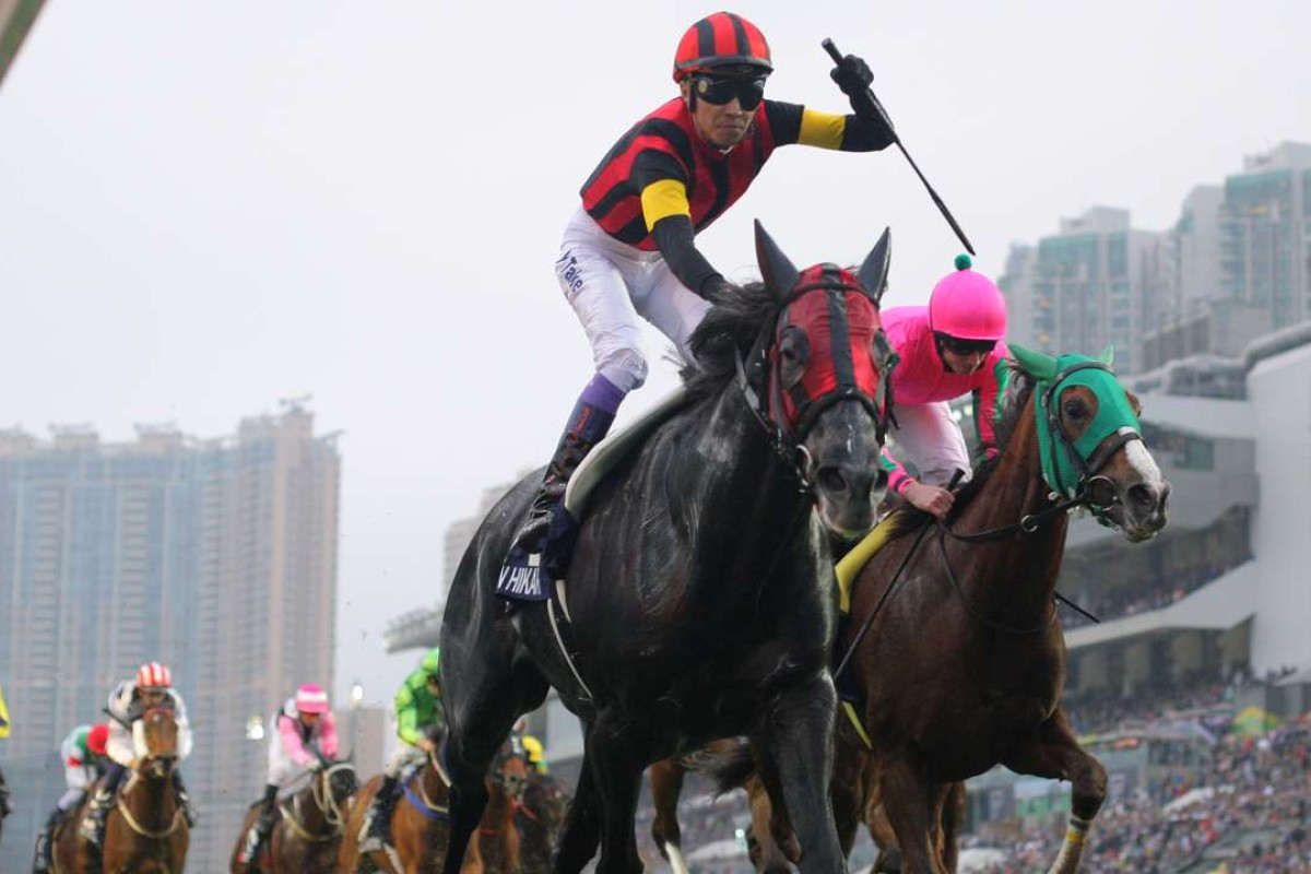 A Shin Hikari wins the 2015 Hong Kong Cup. Photos: Kenneth Chan