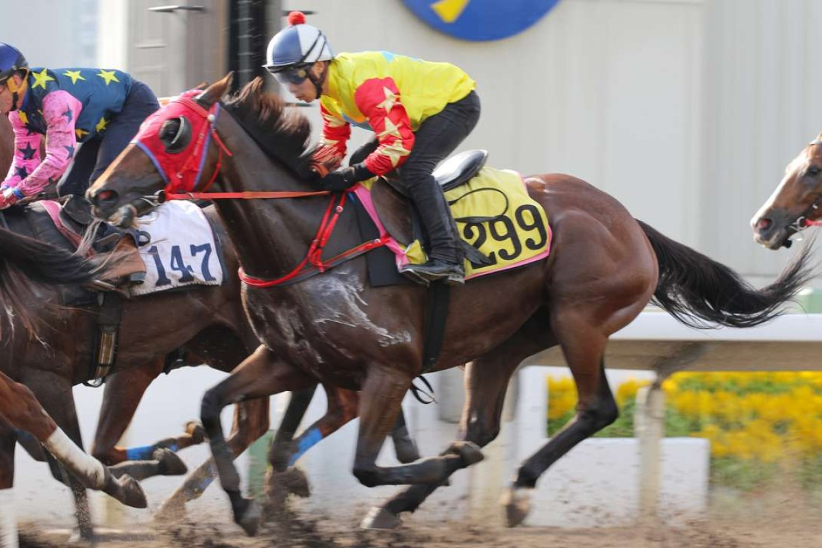 Happy Journey strides out in a barrier trial. Photos: Kenneth Chan