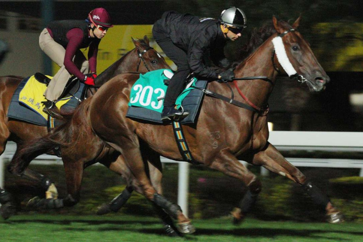 Joao Moreira gallops Able Friend at trackwork last week. Photos: Kenneth Chan