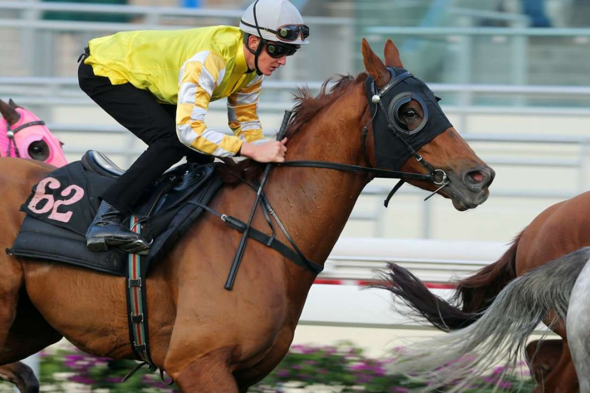 Chad Schofield rides Penang Hall in a trial at Sha Tin. Photos: Kenneth Chan