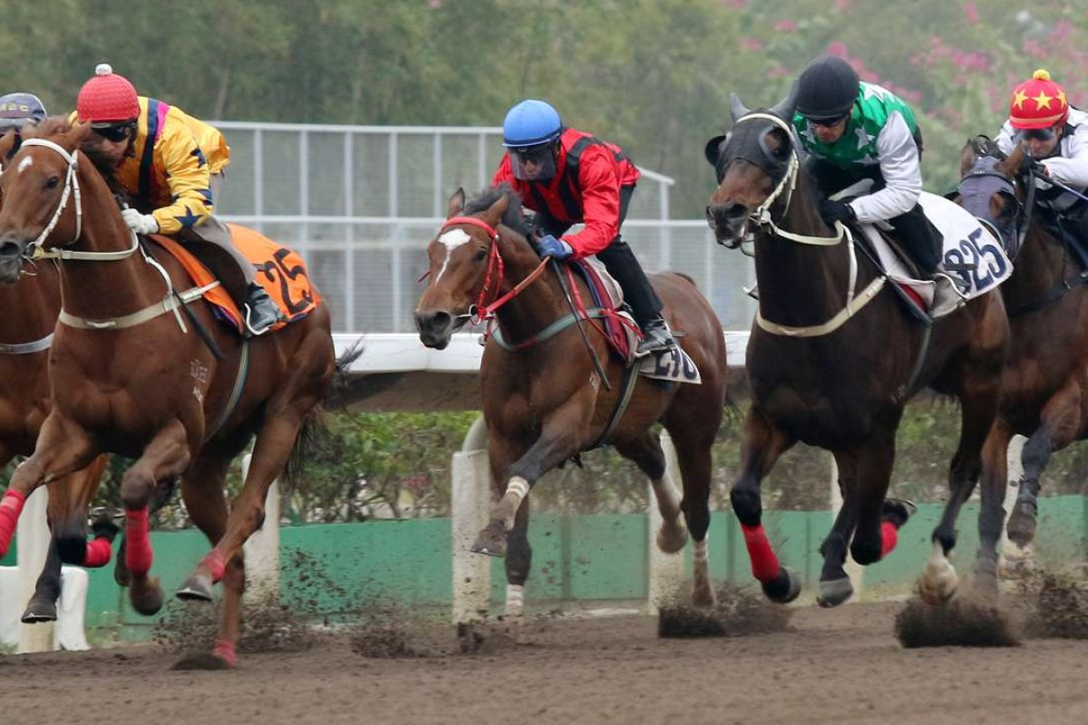 Pakistan Star (green and white) finishes second in a barrier trial on Friday behind Winner's Way (yellow). Photos: Kenneth Chan