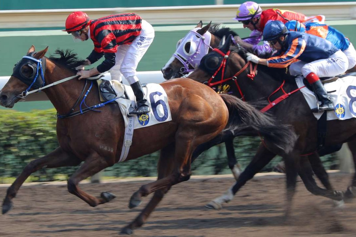 Vanilla cruises to another victory after winning by 10 lengths last start. Photos: Kenneth Chan
