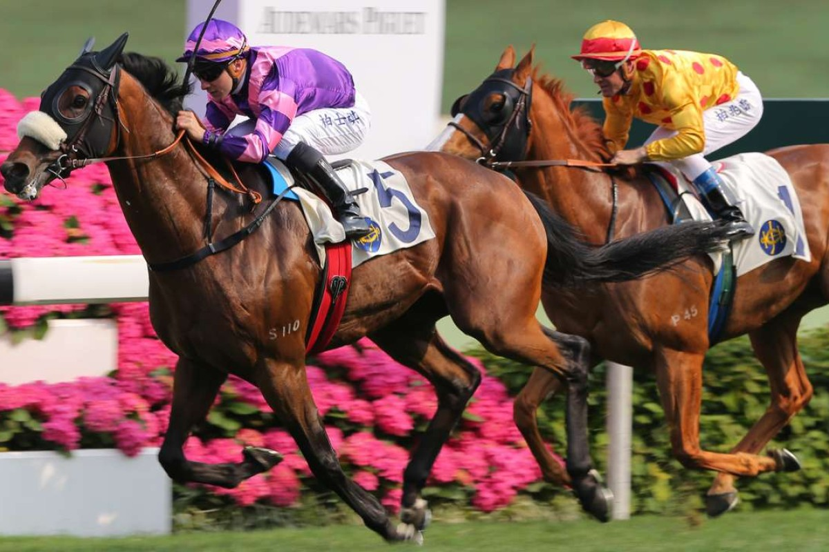 Dundonnell wins the Group Two Sprint Cup at Sha Tin in April 2015. Photo: Kenneth Chan