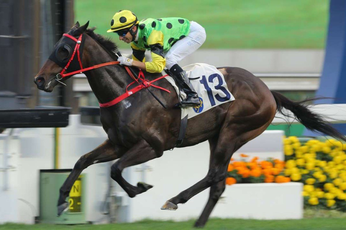 Nothingilikemore cruises home by five at Sha Tin. Photos: Kenneth Chan.
