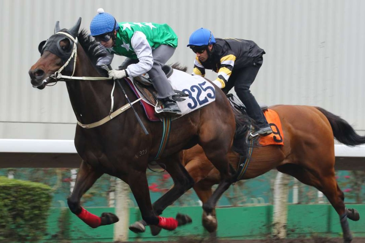 Pakistan Star works home nicely in a trial on Mach 10. Photos: Kenneth Chan.