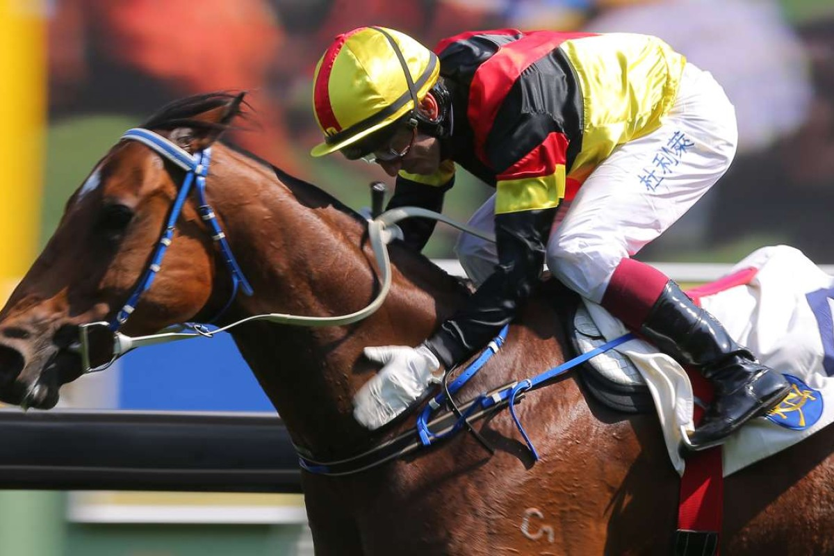 Olivier Doleuze gives Big Flash a pat as he crosses the line at Sha Tin on Sunday. Photos: Kenneth Chan