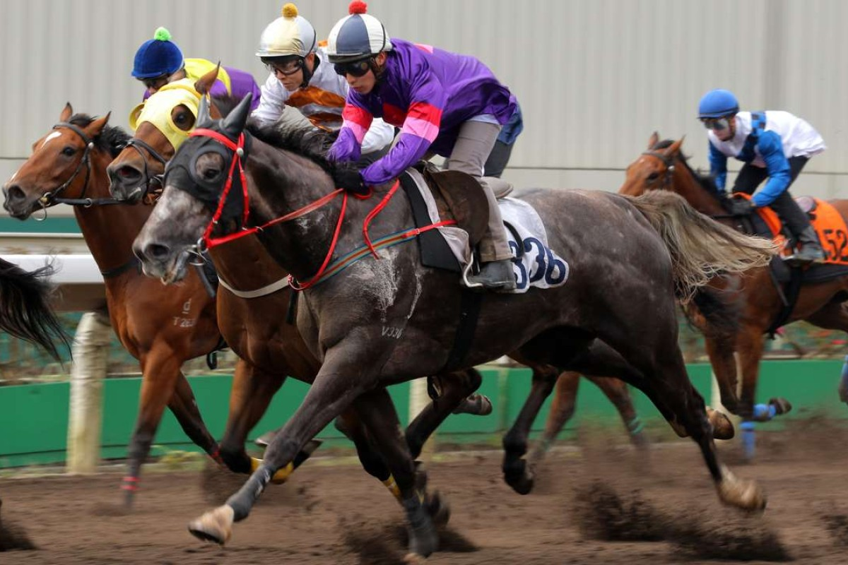 Ben So rides Gran Master in a March barrier trial. Photos: Kenneth Chan