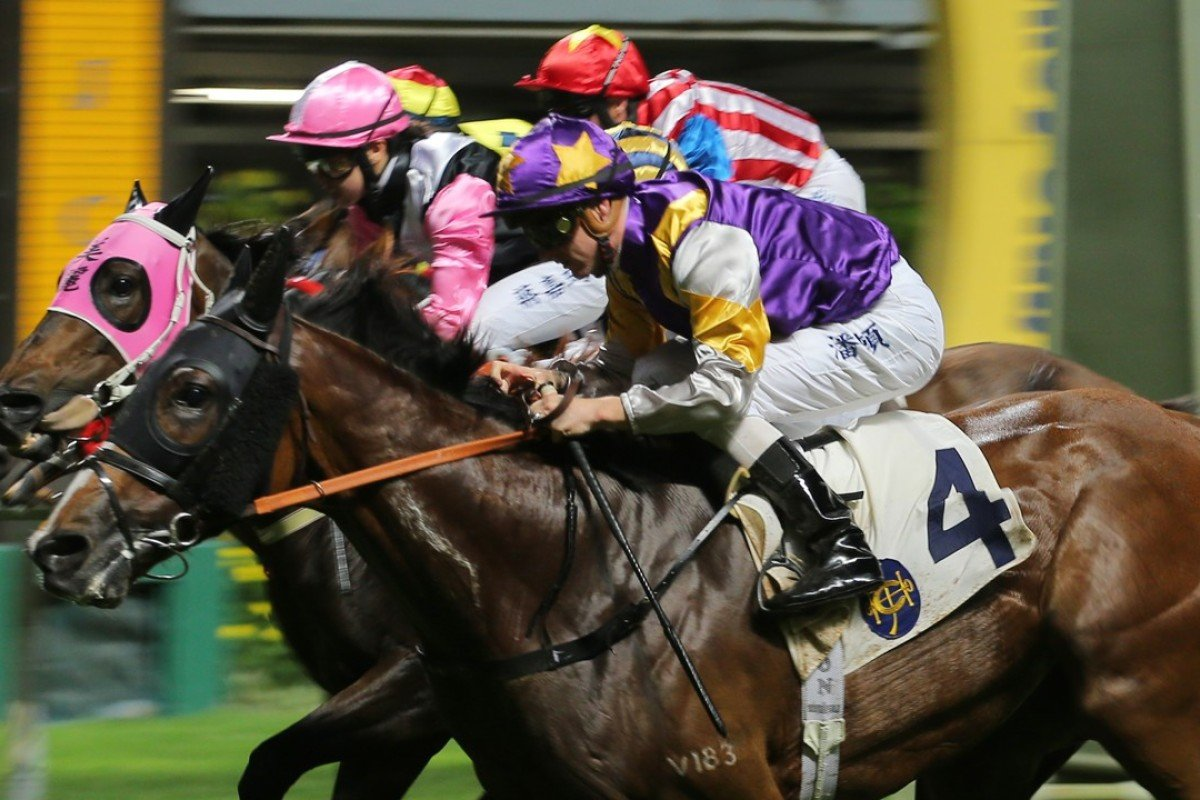 Litterateur (4) storms over the top of his rivals to win at Happy Valley last start. Photos: Kenneth Chan