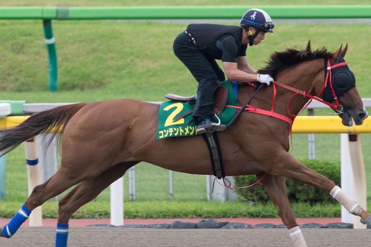 Contentment gallops at Tokyo Racecourse on Thursday ahead of the Yasuda Kinen. Photos: Kenneth Chan