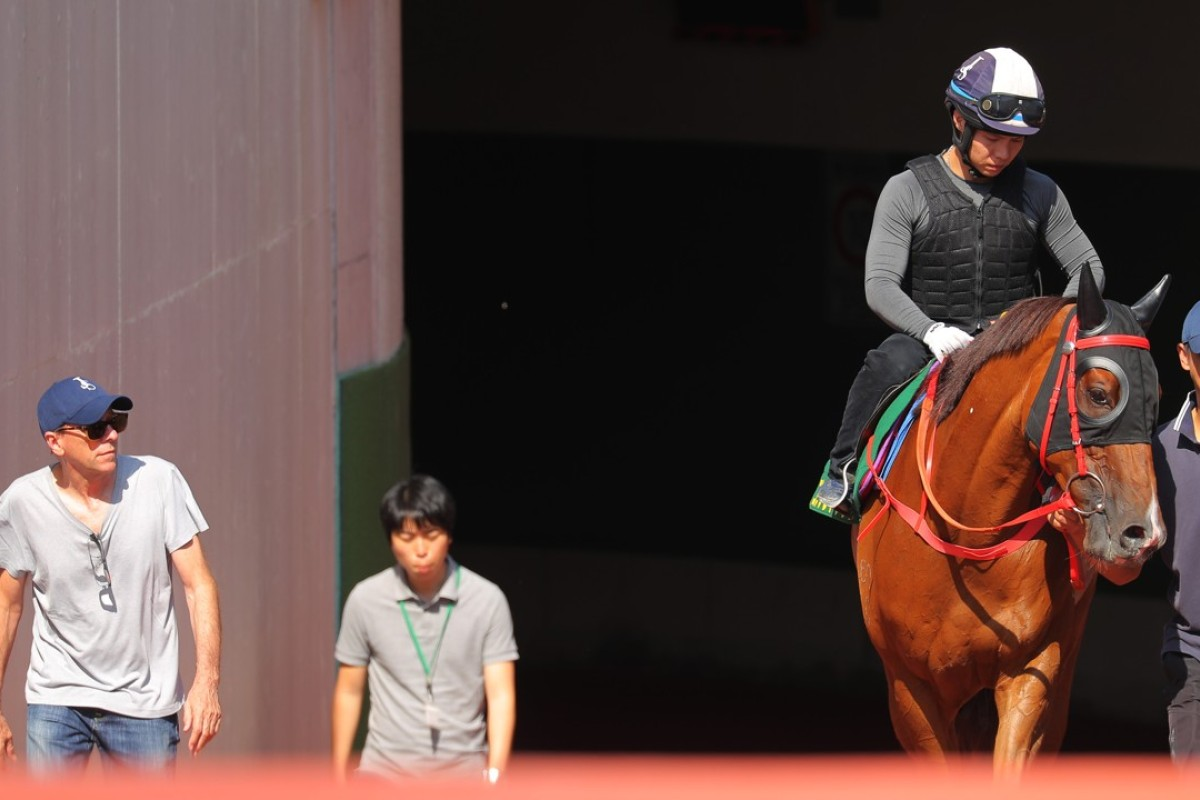 John Size and Contentment after trackwork in Japan. Photos: Kenneth Chan