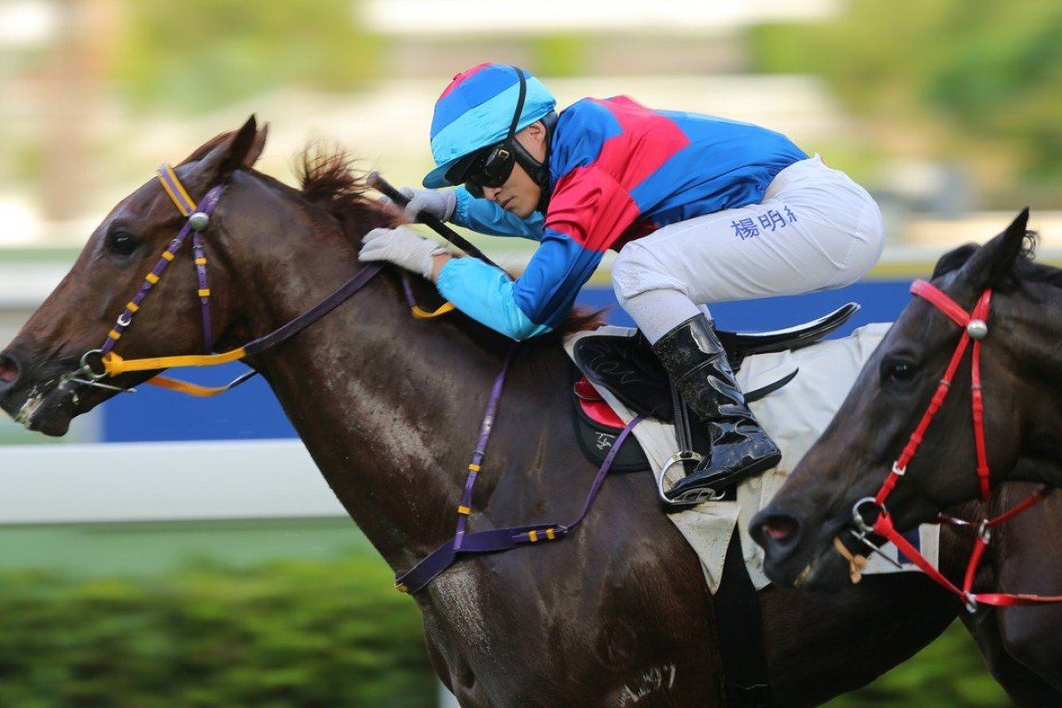 Keith Yeung guides home surprise winner Coby Boy in his Hong Kong debut. Photos: Kenneth Chan